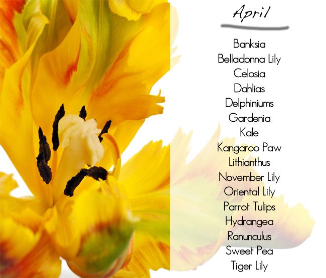 What Flowers In Season, April