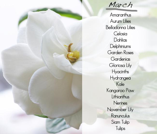 Wedding dress story wedding flower seasons march wedding flower seasons march mightylinksfo